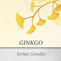 Ginkgo art.jpg