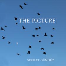 serhatgunduz the picture.jpg