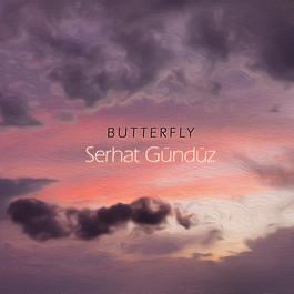 Butterfly art cover.jpg