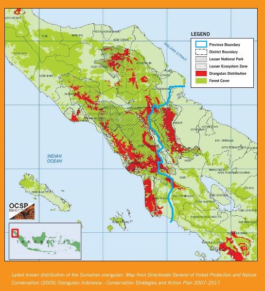 Verteilung Orang-Utans auf Sumatra