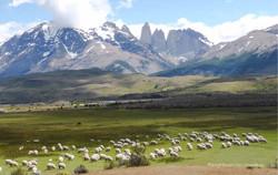Chile & Argentinien 176