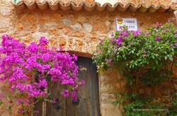 Mallorca022