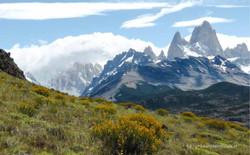 Chile & Argentinien 219