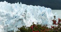 Chile & Argentinien 207