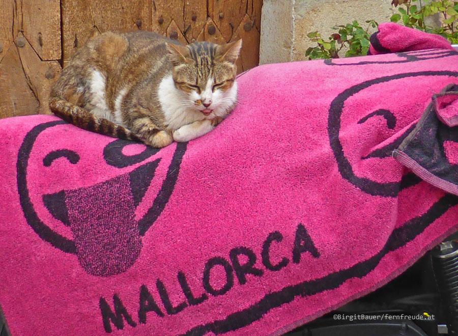 Mallorca024