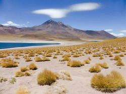 Chile & Argentinien 054