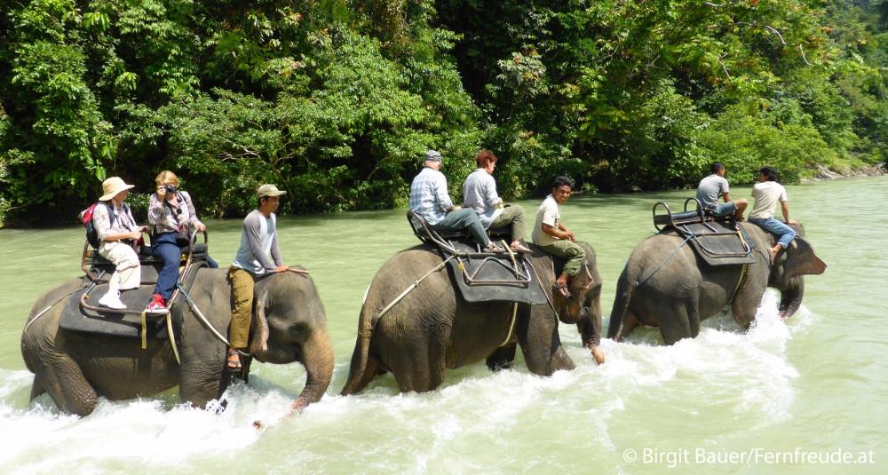 Unser Elefantenritt