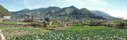 Fruchtbare Felder um Zunil