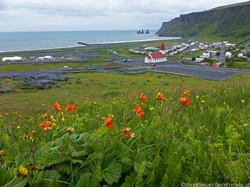 Island018