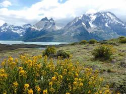Chile & Argentinien 154
