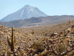 Chile & Argentinien 065