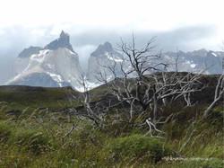 Chile & Argentinien 158