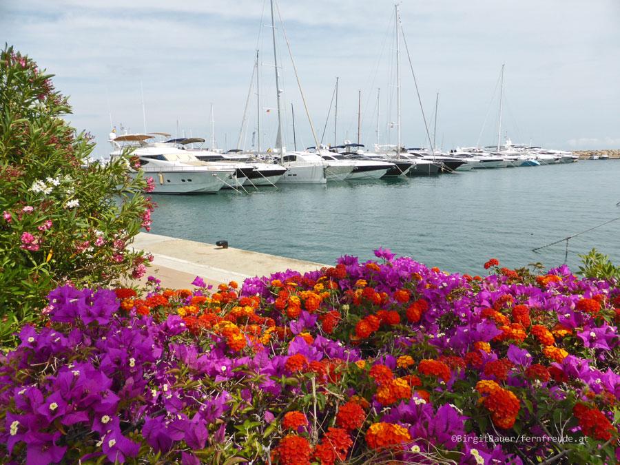Mallorca038