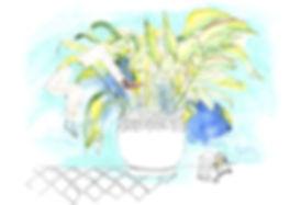 holiday_edited_edited.jpg