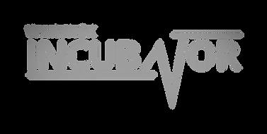 Warwick Incubator Product Market Fit