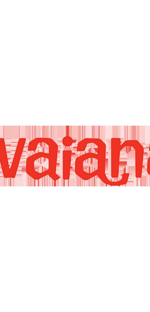 havaianas .png