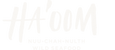 Haoom-Logo-White.png