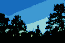 cutout-trees-skyline