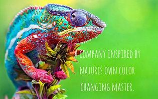 Colorful%20Lizard_edited.jpg