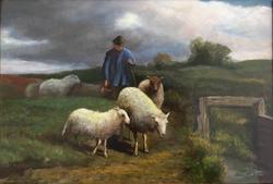 Herder met kudde schapen