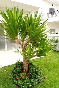 A 130 Garden 3