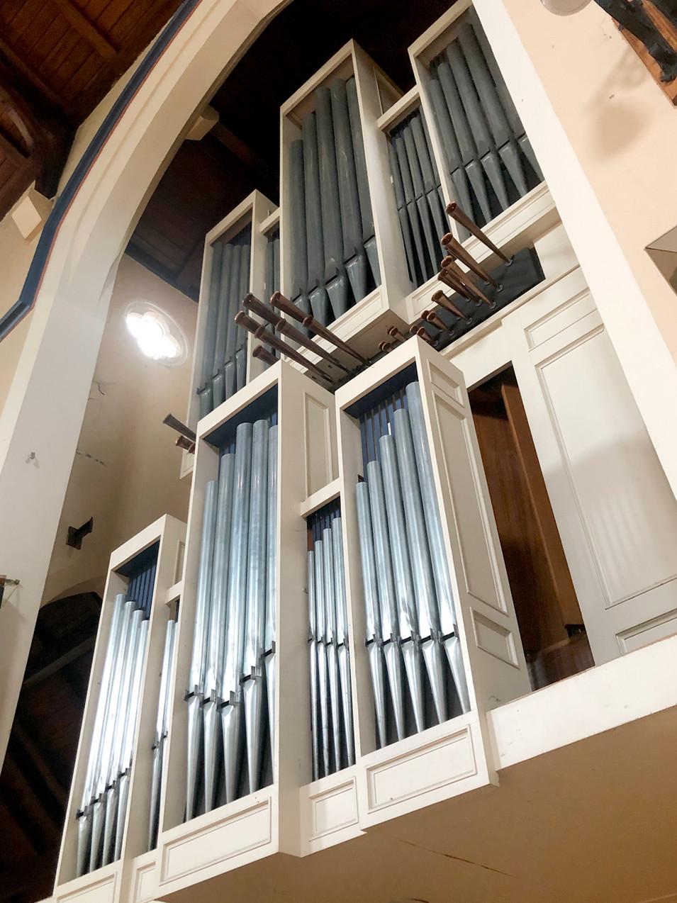 Organ-6_web.jpg