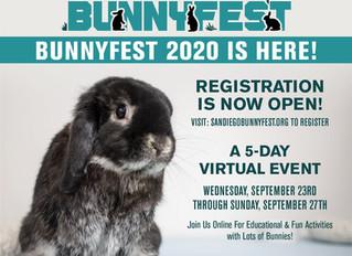 This Week! Virtual Bunnyfest 2020