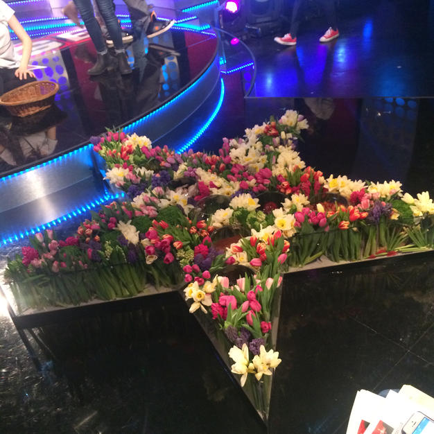 Narooz flowers