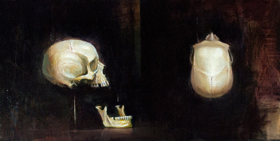 Skull, Jaw & 4-view