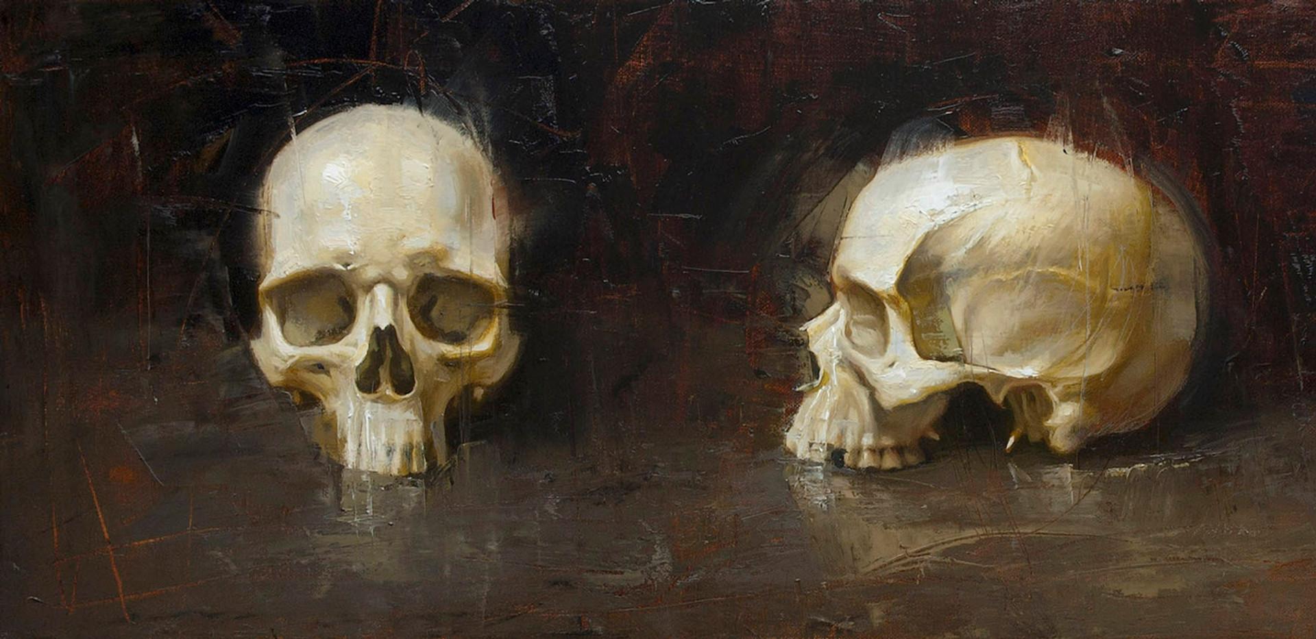 Skull 3 views