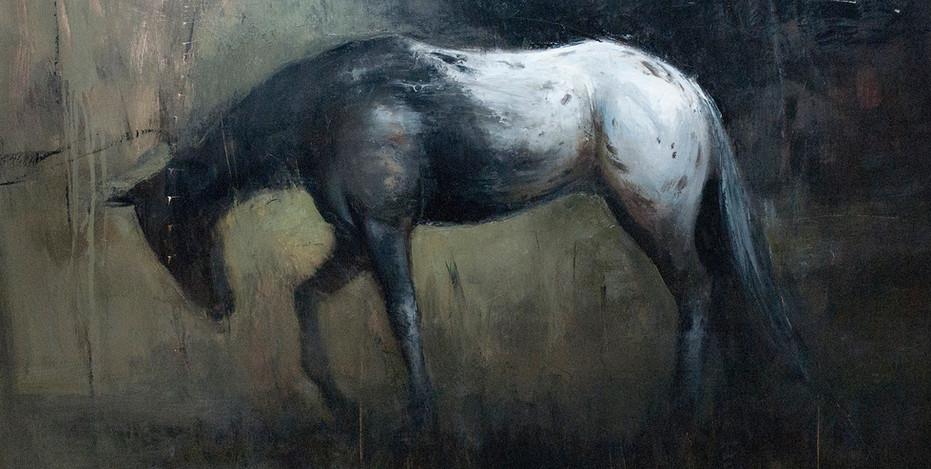 'Appaloosa II'