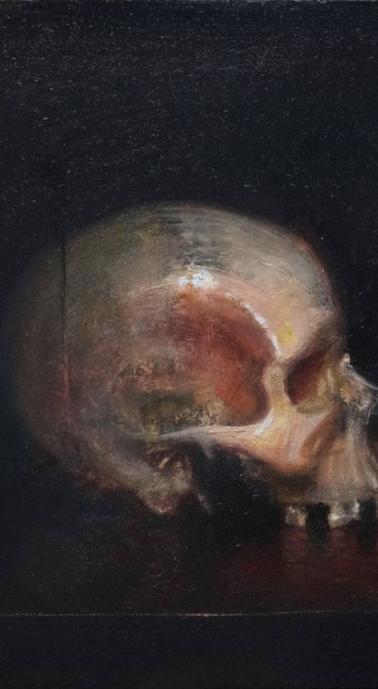 Skull profile 2