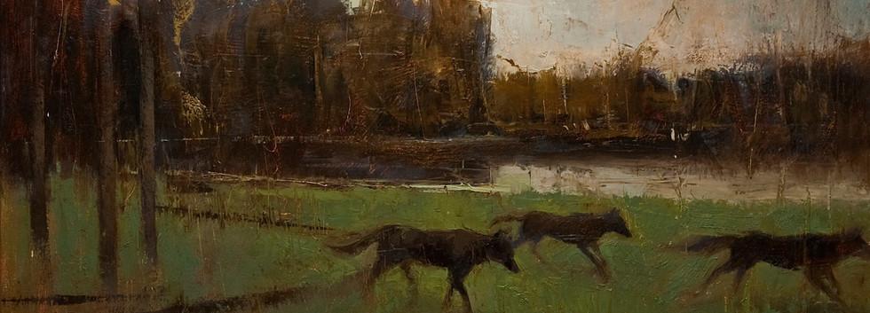 'Coyote Lake'