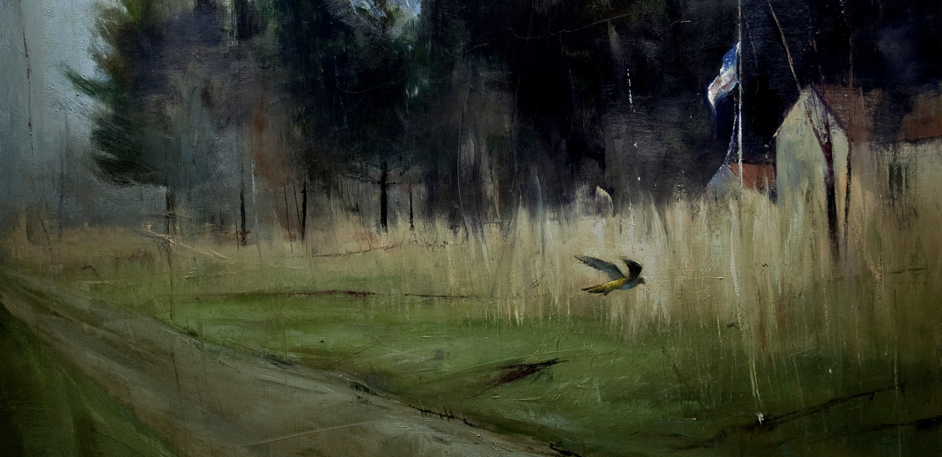 'Kestrel Run'