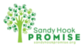 sandy hook promise.png