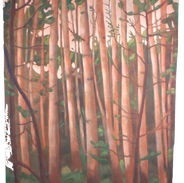 Pioppi, pigmenti su tela, cm 135x160, 20