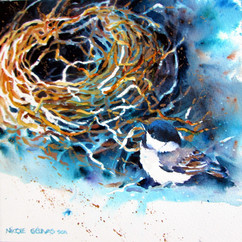 Premier nid