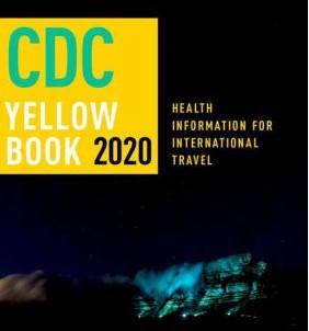Travel immunizations and health