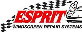 Esprit windscreen chip repair