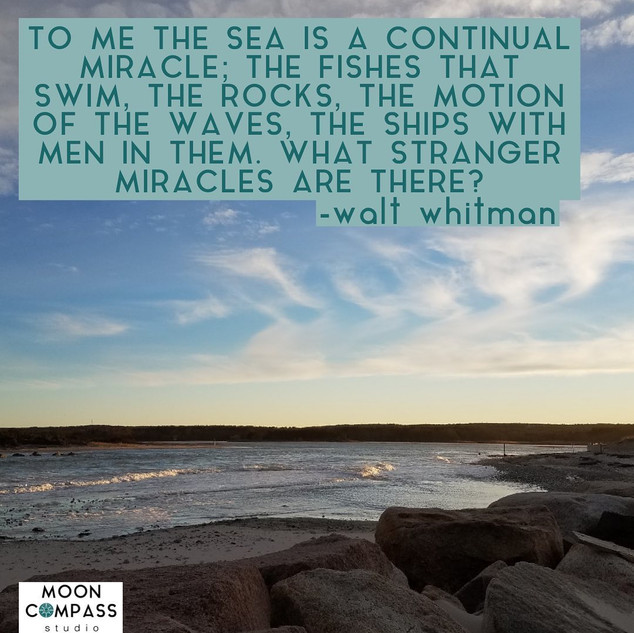 the sea is a continual miracle.jpg