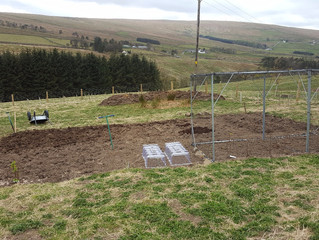 End of phase one - vegetable garden dug