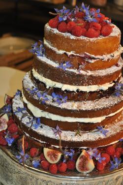 Chiffon Cake with cream