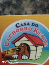 casa do cachorro kente