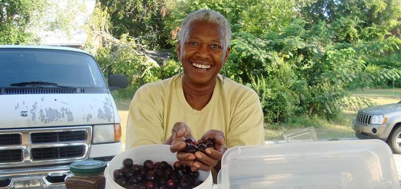 Josie, The Blueberry Lady