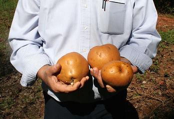 trade show Big Fruit.jpg
