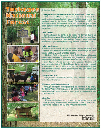 National Forest Magazine Ad