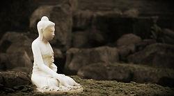 meditation, mindfulness, metta