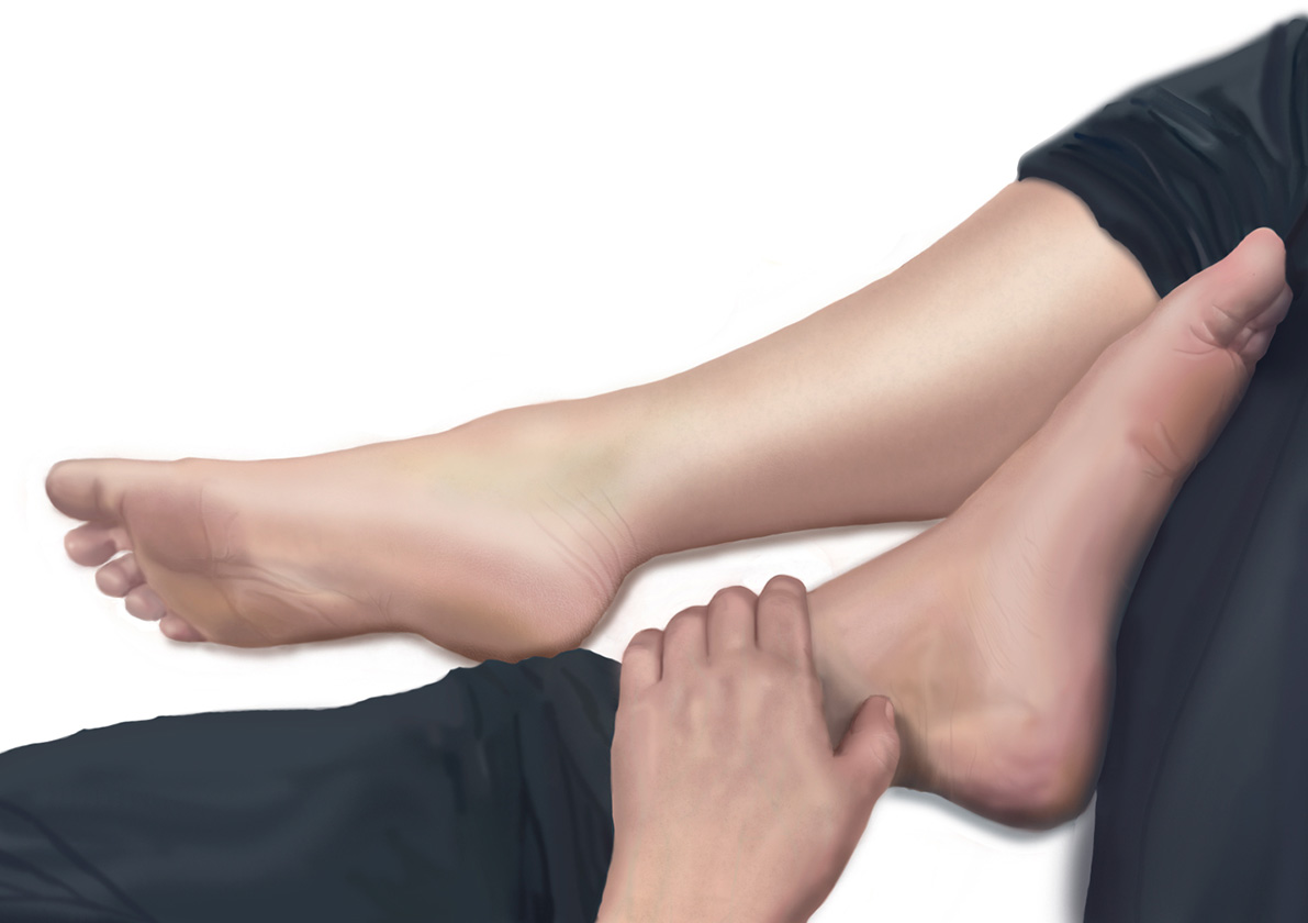 Realistic Hand and Feet