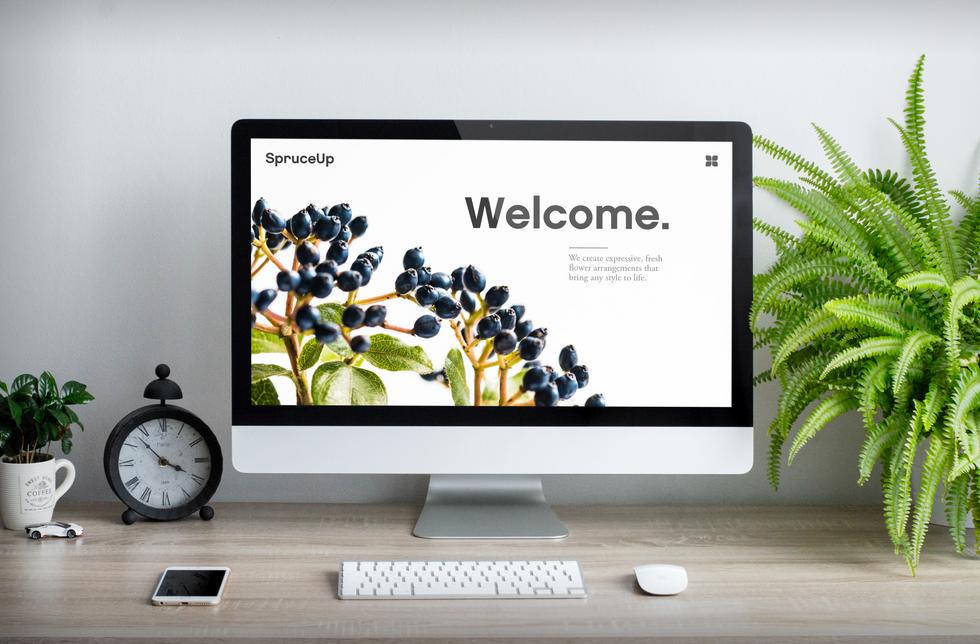 homepage SpruceUp.png