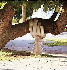 Tree held up hand.jpg